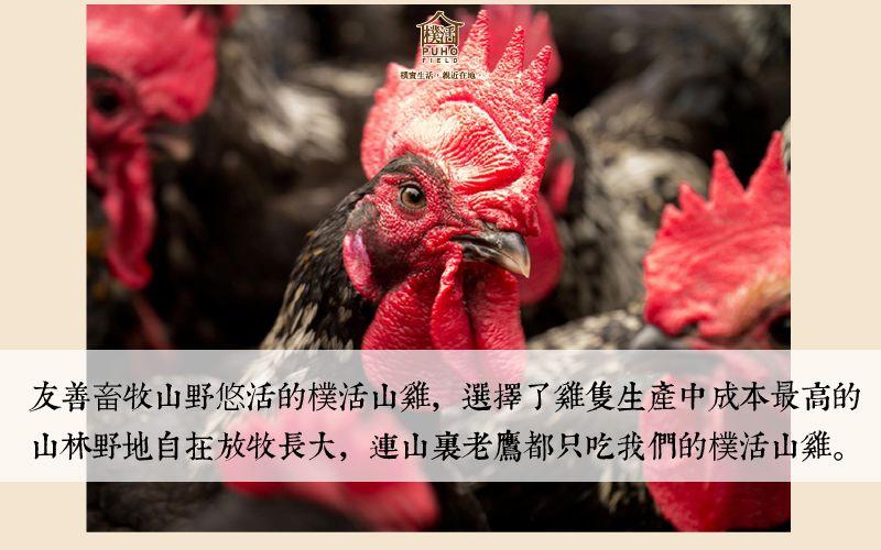 樸活山雞_800x500_網路上架說明圖文用_2